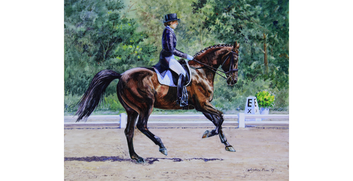 Extended Canter