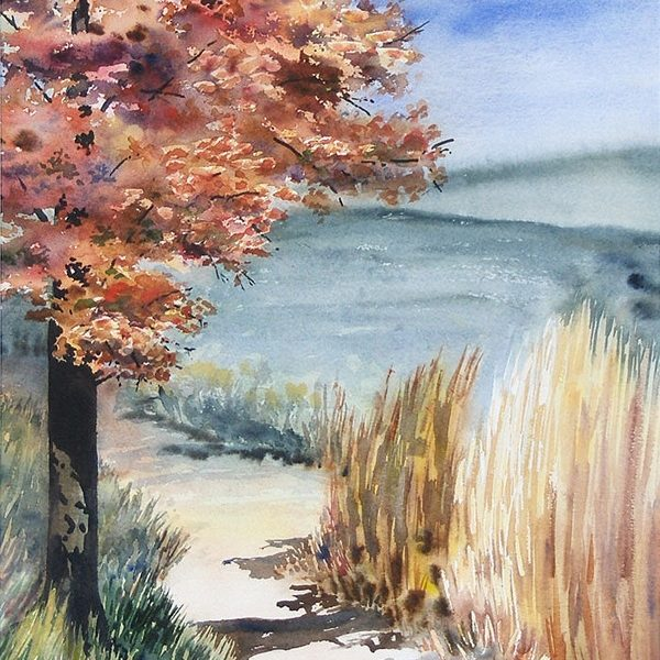 Red Maple Trail – Original