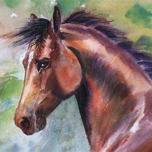 Star Stallion - Original