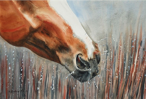 Horse Frost – Original