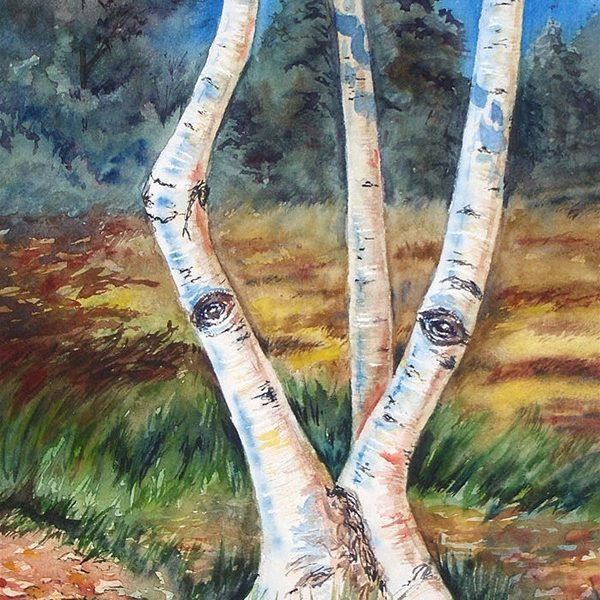 Searching Birch - Original