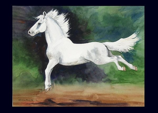 Leaping Lipizzan Note Card