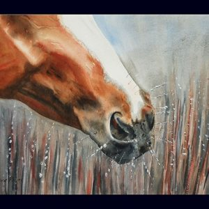Horse Frost Note Card - Pkg. of 4
