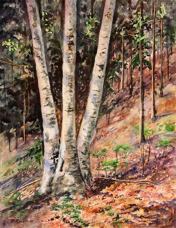 Hillside Birch - Giclee Print Large