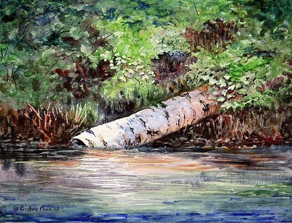 Fallen Birch - Giclee Print Large