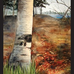 Northern Birch Note Card