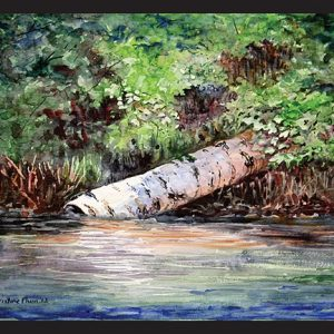 Fallen Birch Note Card
