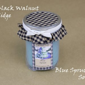 winter scent candle
