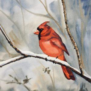 Cardinal by Kristine Plum