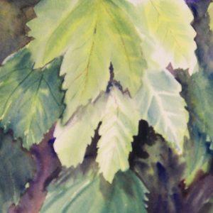 Leaf demonstration